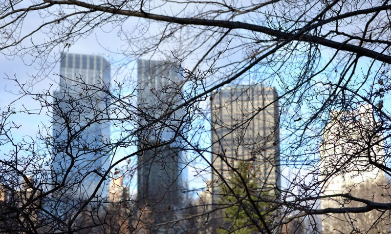 5 Lieblingsbilder | New York - central park 800x480