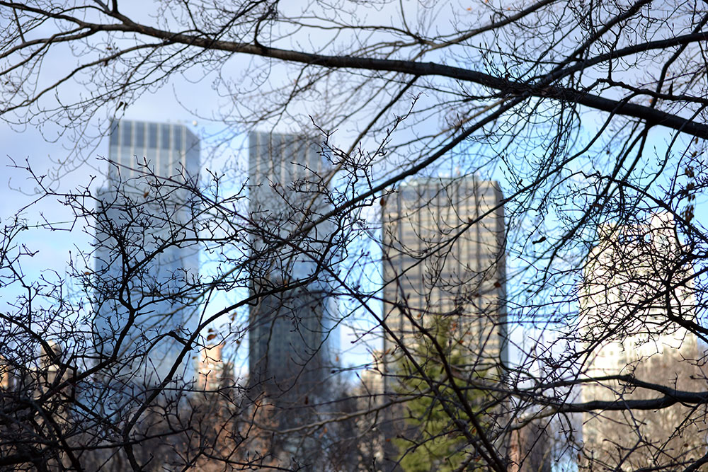 5 Foto's waar ik trots op ben | New York - central park