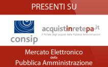 Logo-Mepa