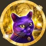 Mesa990 avatar