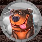 serq777 avatar