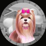 sousko avatar