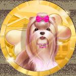 G0lvo avatar