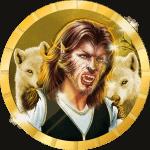 youngmula9 avatar