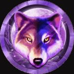 majnor96 avatar