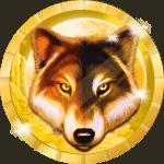 Igorbilbil avatar