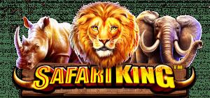 GTT Safari King