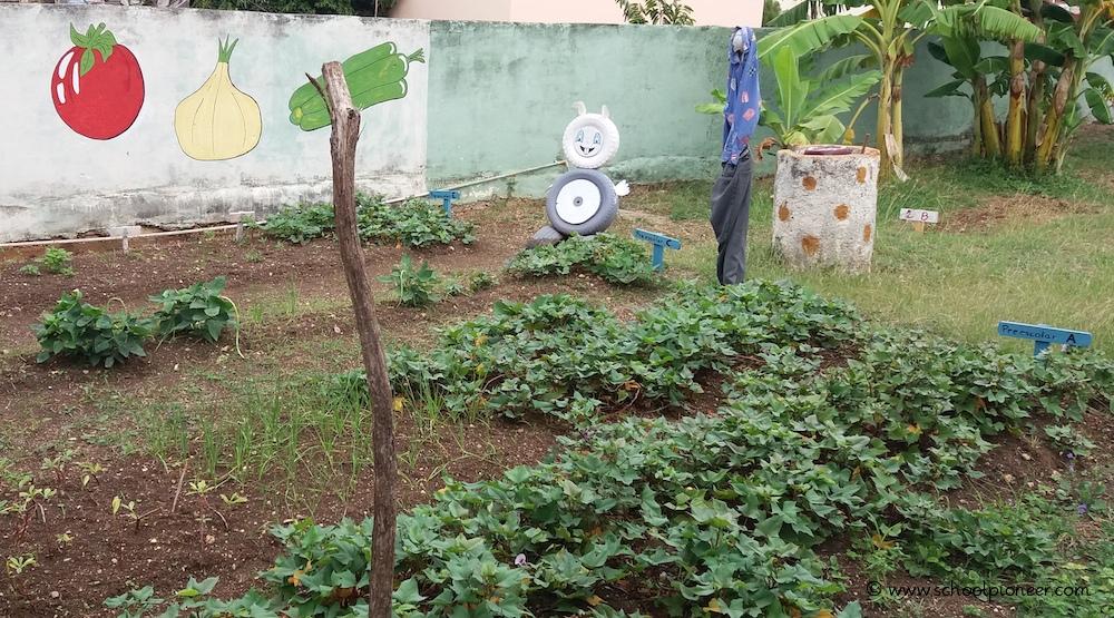 Schulgarten-Kuba-Grundschule