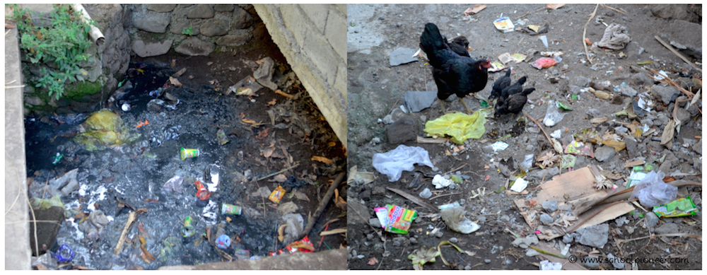 Folgen-der-Vermuellung-Trash-Walk-Grundschule-Umwelterziehung-Umweltschutz