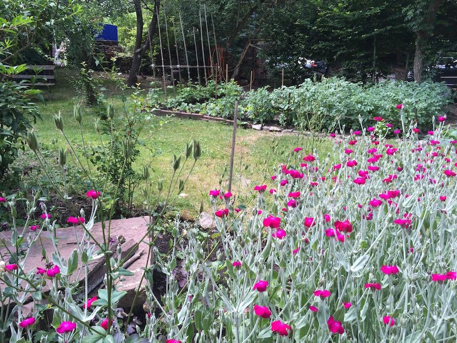 Garten_Graben18_Rottweil_spreadmind