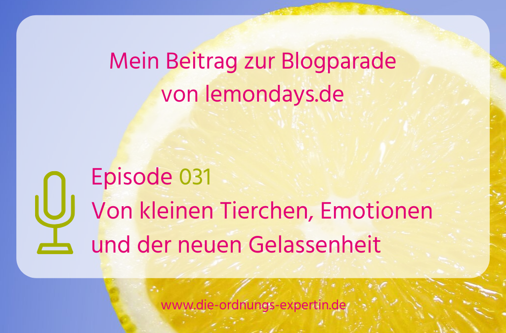 Episode 031 - Blogparade Lemondays 2019