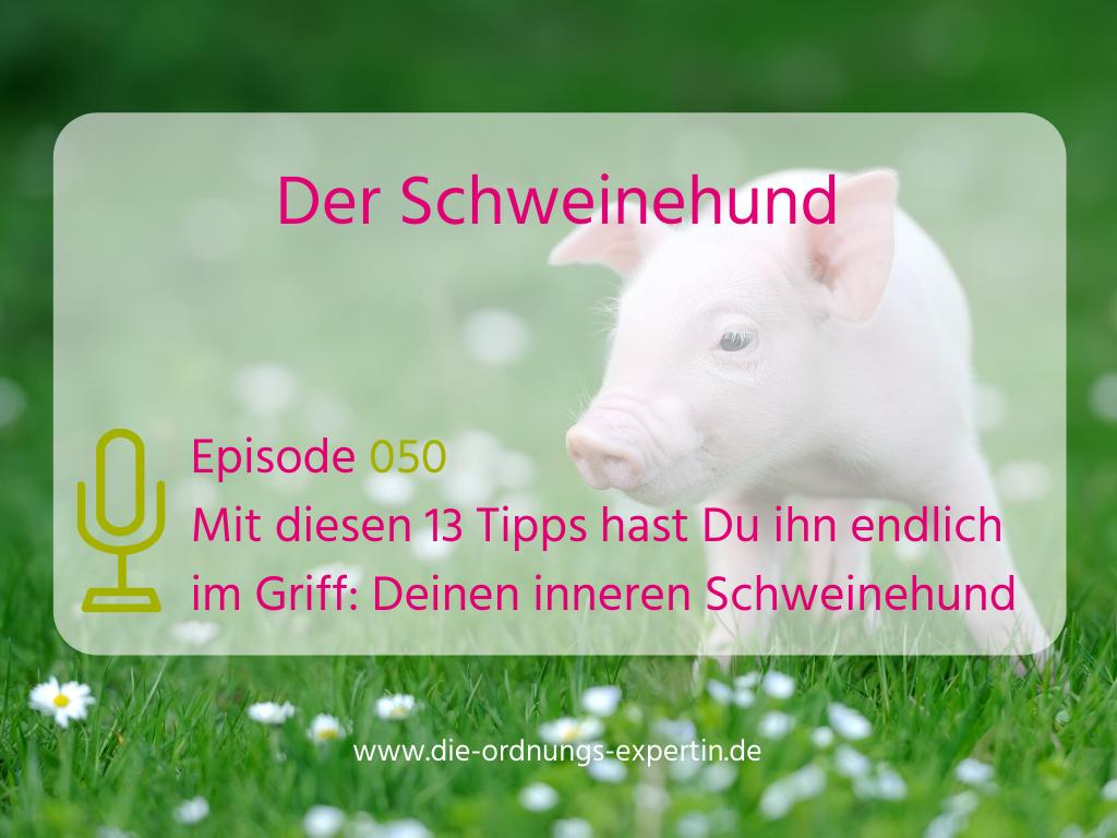050 – Der innere Schweinehund