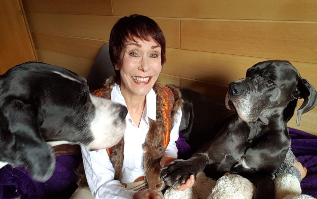 Langfristig denken - die Hunde helfen dabei