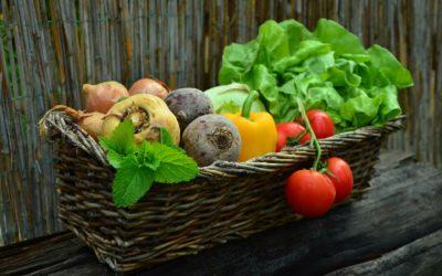 Bio oder nicht: Sind Bio-Lebensmittel wirklich gesünder?