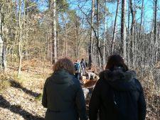 Wanderung-Andoggen-24.02.19_11