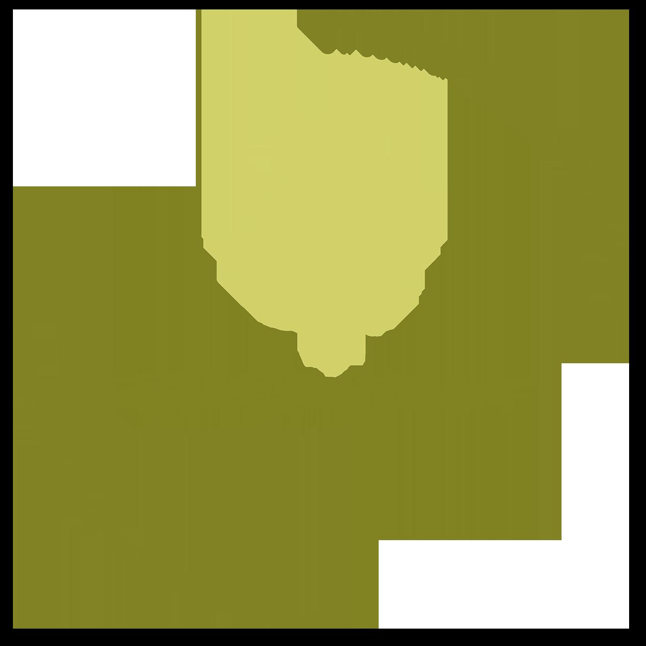 Baum Heidi Weichhart Stressabbau für Berufs- und Familienfrauen