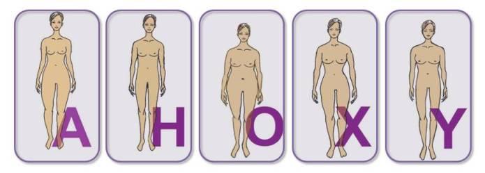 Überblick der Figurtypen A, H, O, X, Y von der Modefluesterin