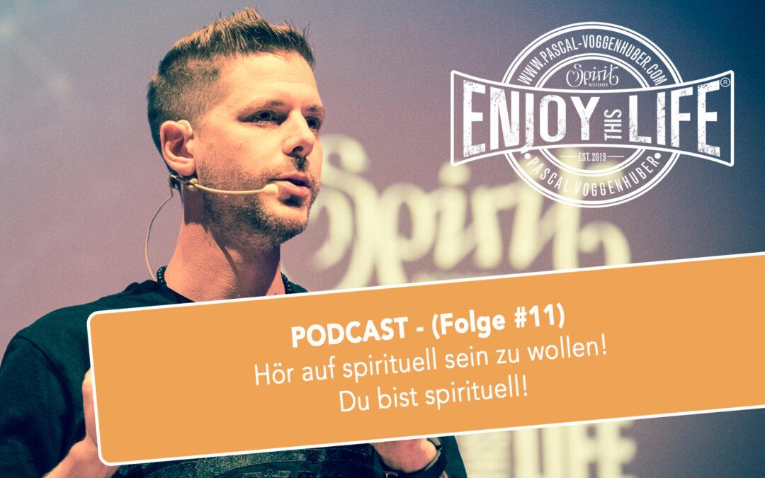 Hör auf spirituell sein zu wollen! Du bist spirituell! (Folge #11)