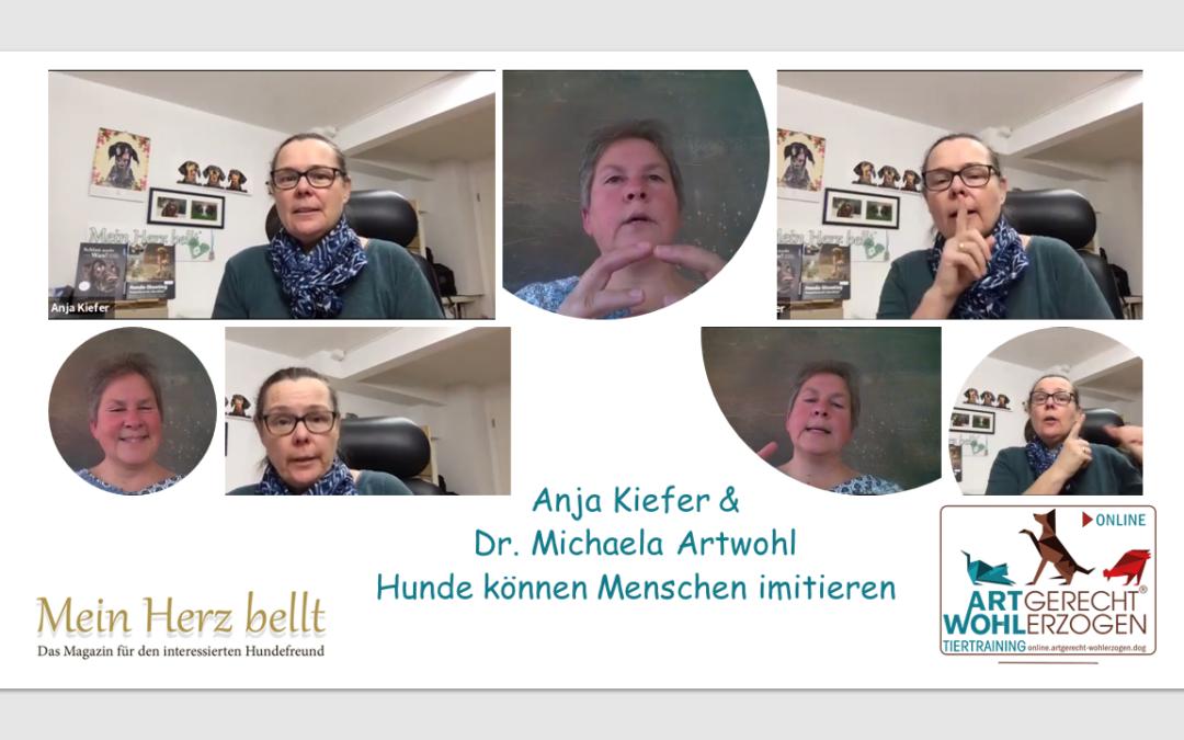 """Video Interview mit Anja Kiefer vom Magazin """"Mein Herz bellt"""""""