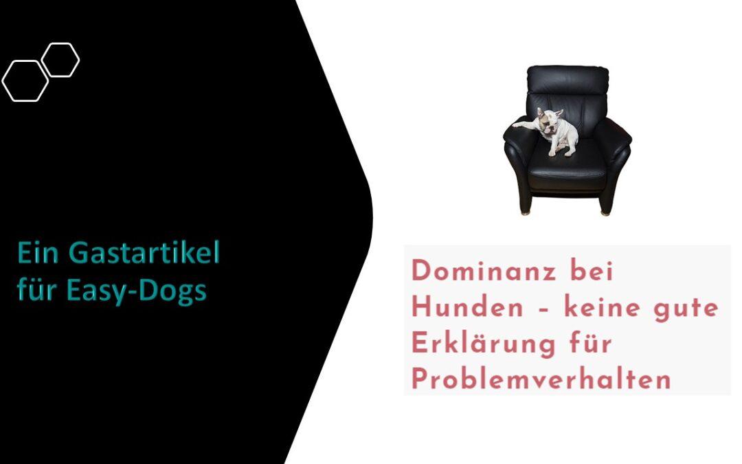 Dominanz bei Hunden – keine gute Erklärung für Problemverhalten