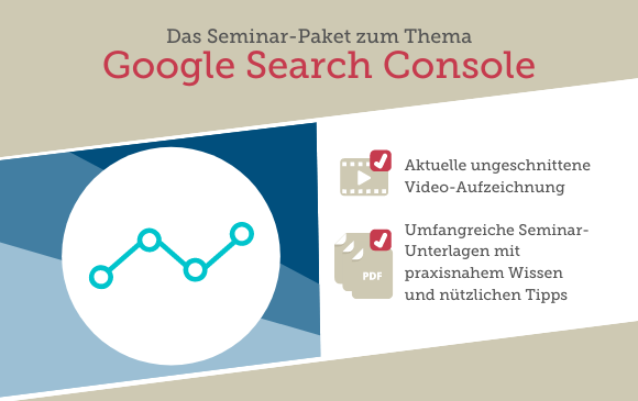 Seminar-Paket: Google Search Console Kompakttraining