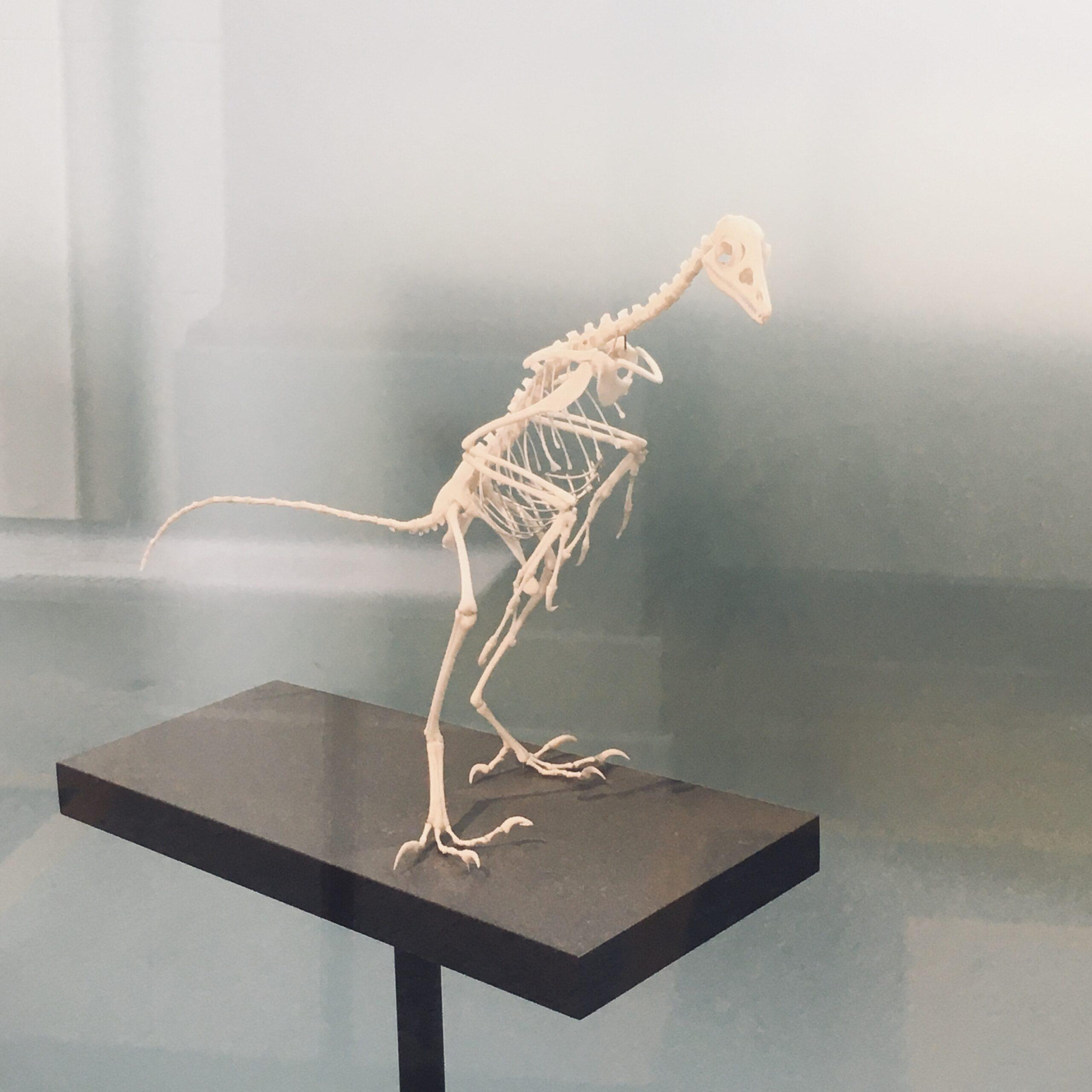 #8 Hochsensibel im Museum