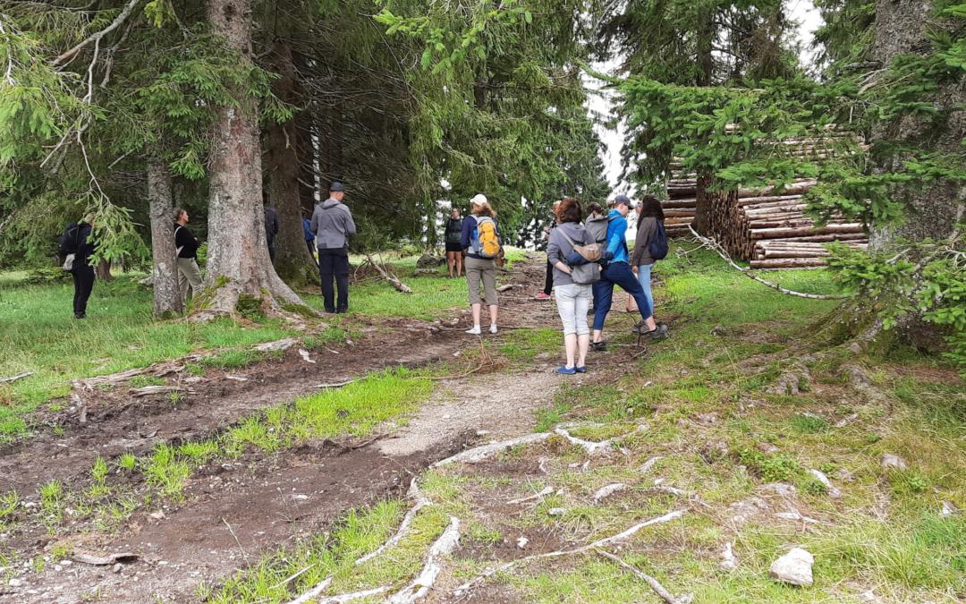 Erkenntnisse: Ein Tag in voller Stille im Hollerbühl im Schwarzwald