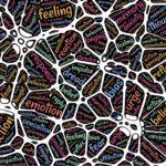 Brain Power – Gehirn Leistung steigern