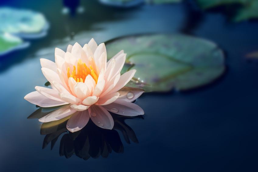 Meditation – wie machst Du das?