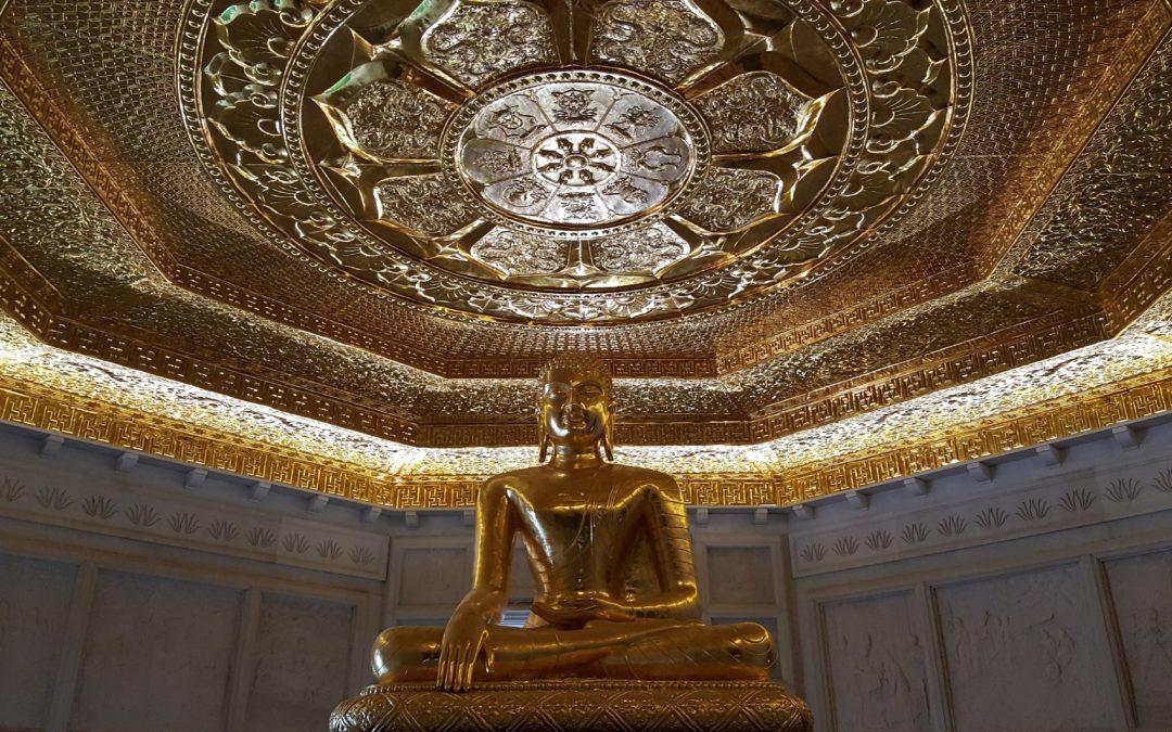 Das meditierende Gehirn + eine kleine Meditationsanleitung