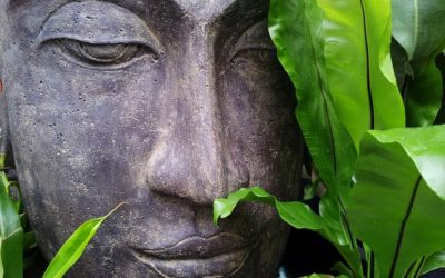 Meditation ist pure Medizin – zum Tag der seelischen Gesundheit am 10.10.2018