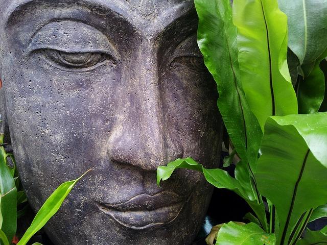 Meditation als Medizin für Gehirn und Gene