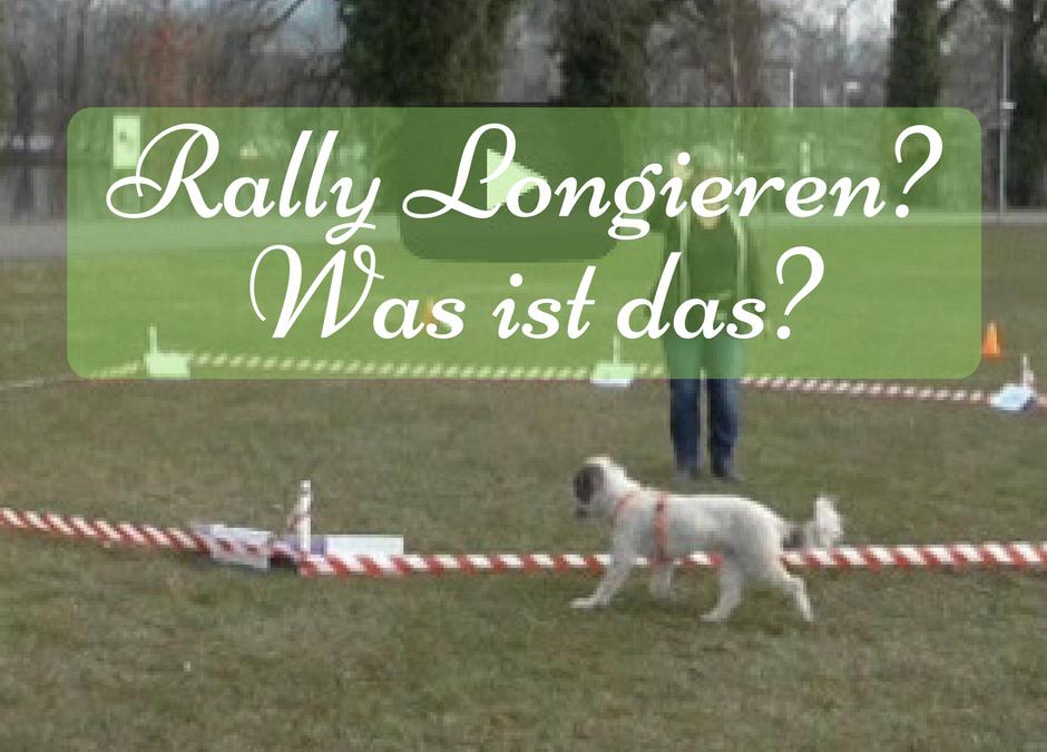 Rally Longieren – Was ist das?