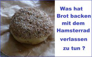 Was hat Brot backen mit dem Hamsterrad verlassen zu tun ?