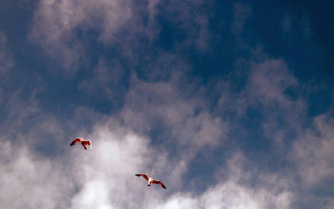 Loslassen im Urlaub 15 Dankbarkeit entwickeln