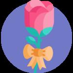 Rote Rose vor lila Hintergrund