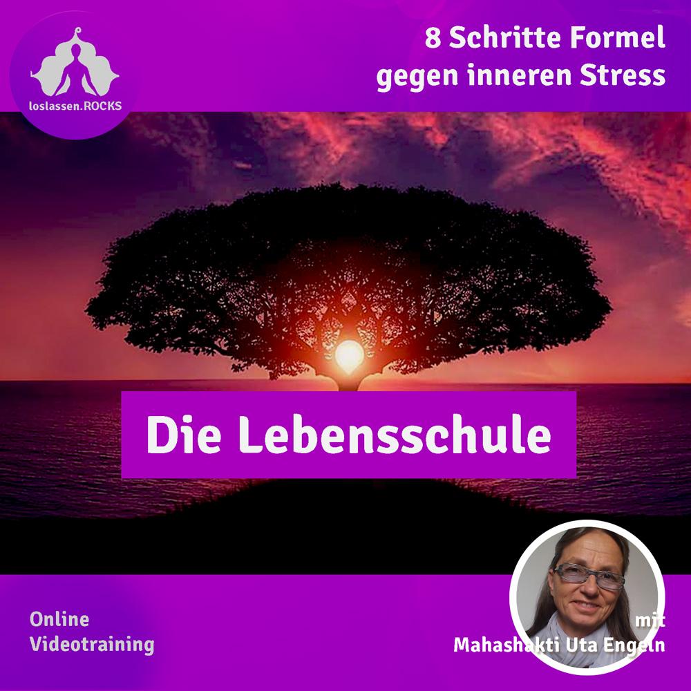 Die Lebensschule - Online-Video-Kurs
