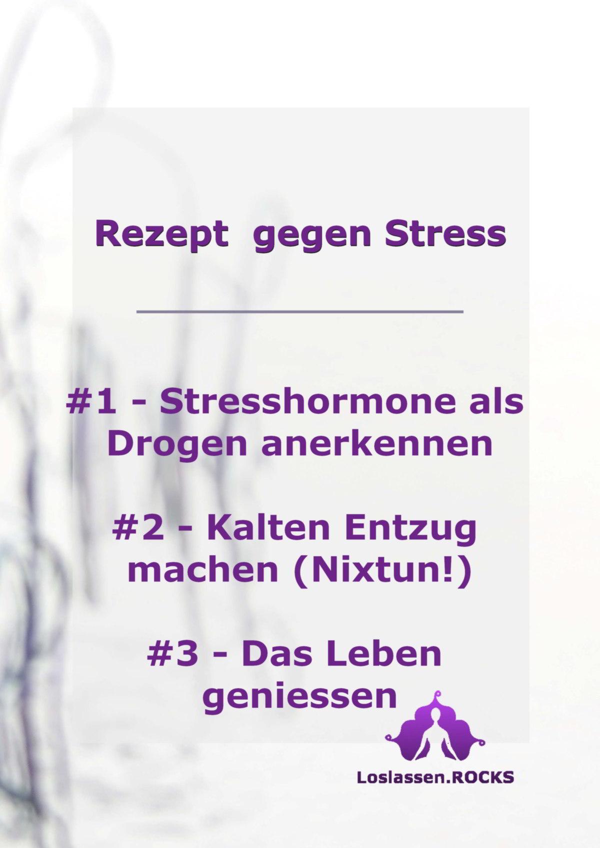 Rezept gegen Stress #1 - Stresshormone als Drogen anerkennen #2 - Kalten Entzug machen (Nixtun!) #3 - Das Leben geniessen