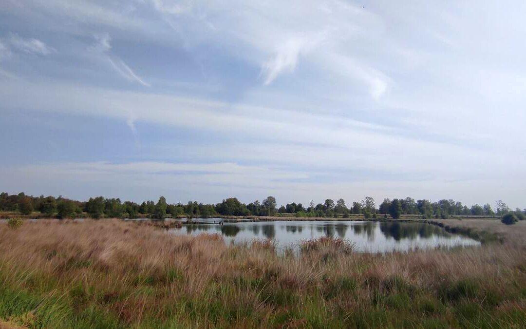 Papenburger Moorlandschaft mit Tümpel und viel Himmel