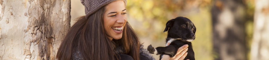 Erlebe glückliche Zeiten mit deinem Hund