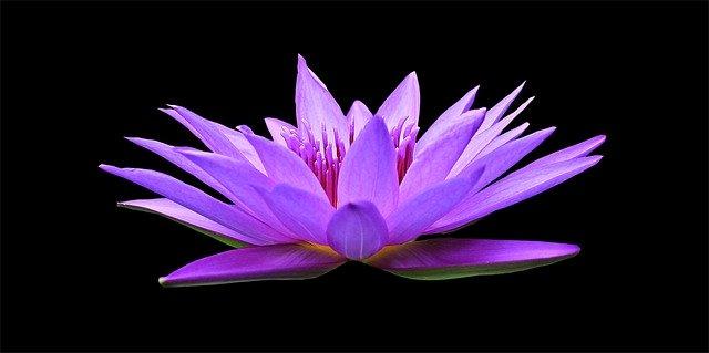 Hilft meditieren bei Rheuma?
