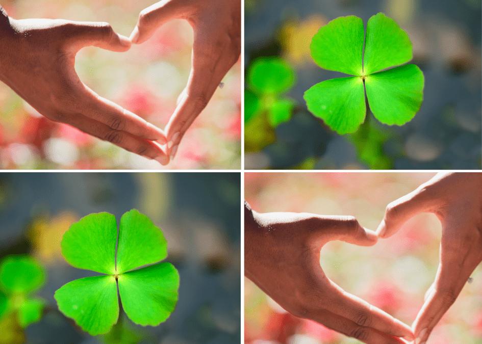 Vom Glück glücklich zu sein ~ 3 Wege, die du auch gehen kannst
