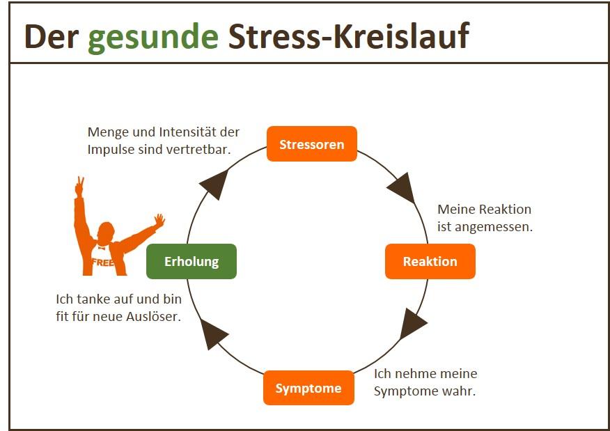 Gesunder Kreislauf Stress-Symptome
