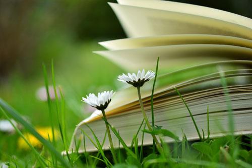 EASE YOUR LIFE - Ihr Kostenloser Rundgang durch die Good-Life-Online-Akademie