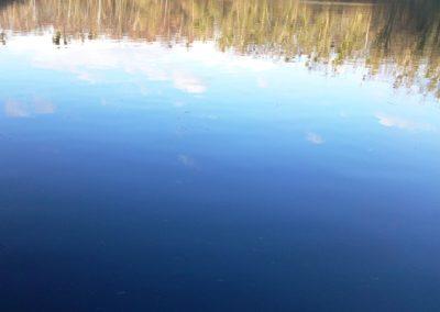 Wasserspiegelung-4