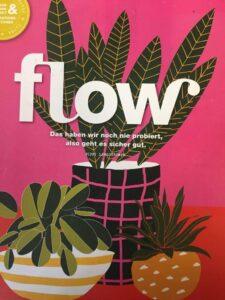 Flow - Deine mentale Bestform
