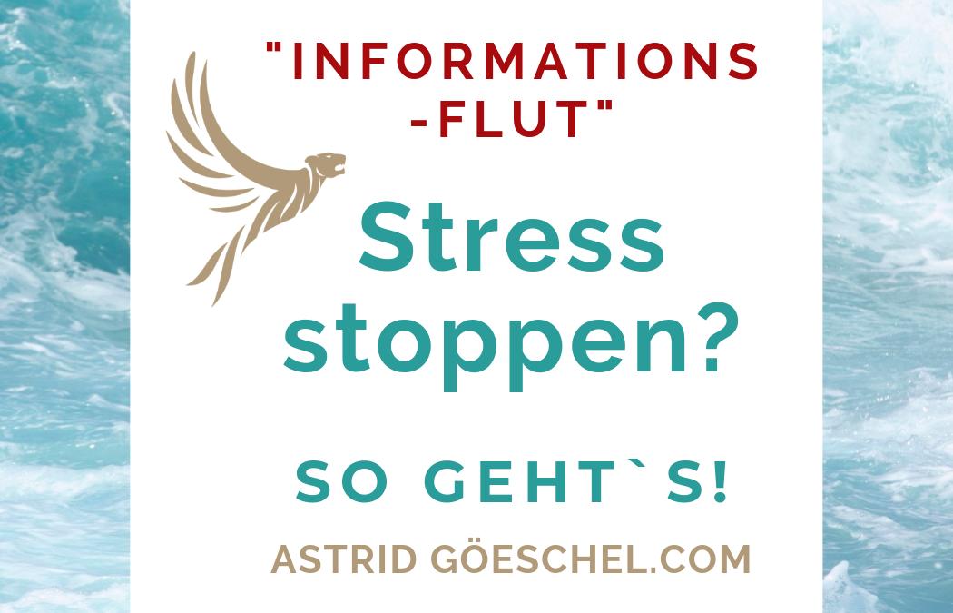 # Folge 51 – Stress stoppen? So gehts!