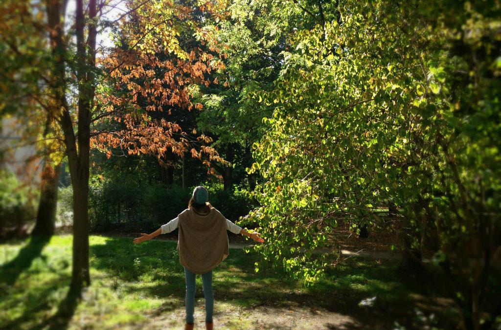 Mit Ayurveda gesund in den Herbst starten: Mit diesen 5 Tipps kommst du durch jeden Sturm