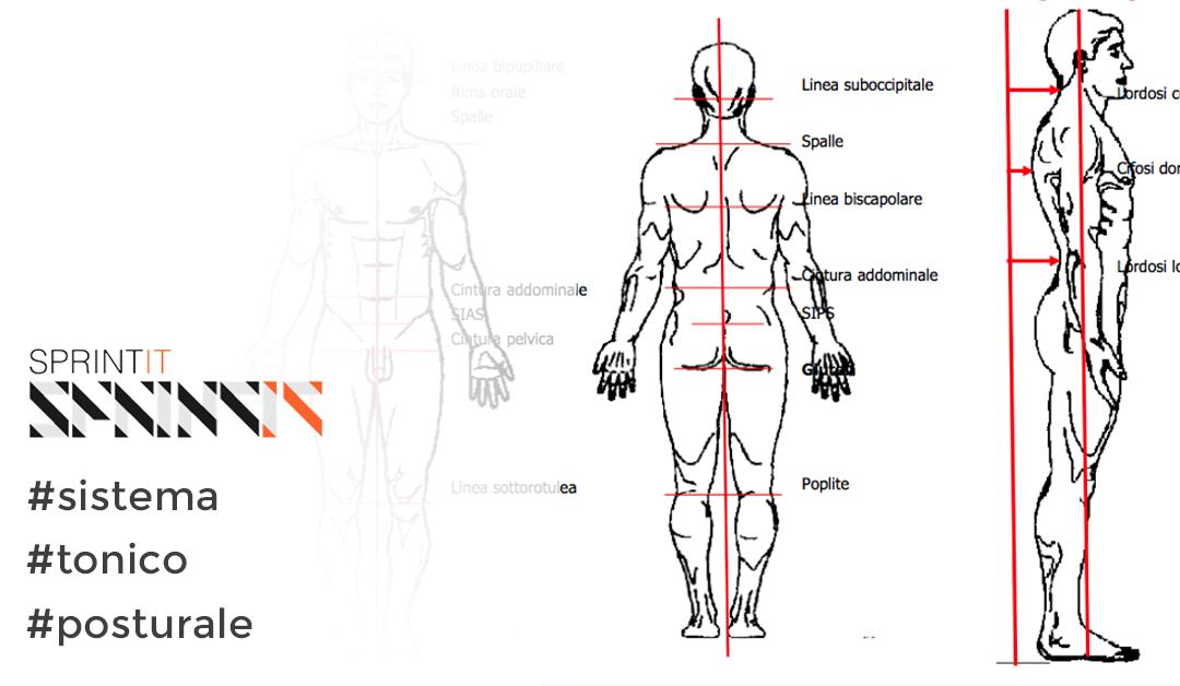 Il sistema tonico posturale