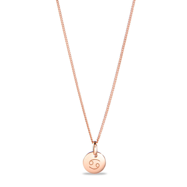 Mini Zodiac Coin Ketting